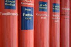 Rechtsanwalt Bonn, Rechtsanwaltskanzlei Bonn, Familienrecht, Ehevertrag, Scheidung, Trennungsfolgenvereinbarung, Güterrecht, Gütertrennung, Unterhalt, Sorgerecht, Umgangsrecht, Versorgungsausgleich